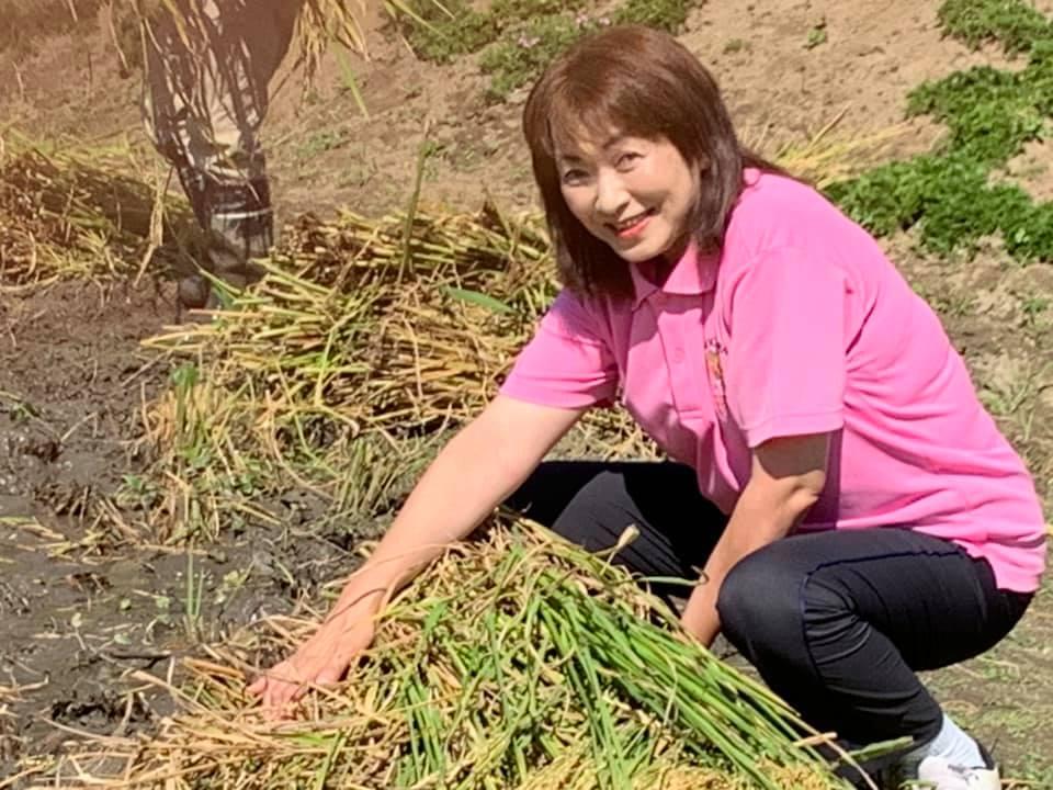 稲刈りです〜(^^) 🌾page-visual 稲刈りです〜(^^) 🌾ビジュアル